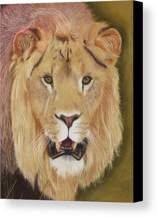 Lion Canvas Print featuring the drawing Hear Me Roar by Lori Hanks