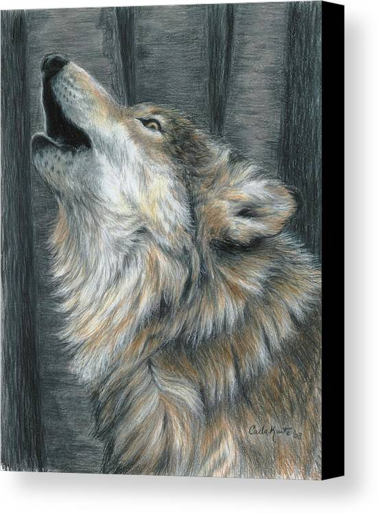 Wolf Canvas Print featuring the drawing Howling Wolf by Carla Kurt