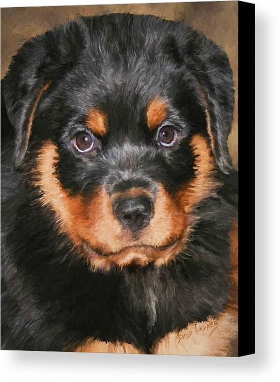 Rottweiler Canvas Print featuring the painting Jacob by David Wagner
