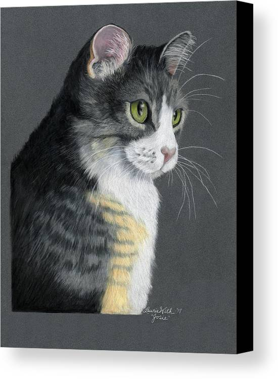 Cat Canvas Print featuring the drawing Josie by Laurie With