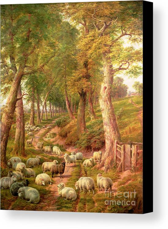 Landscapes Canvas Print featuring the painting Landscape With Sheep by Charles Joseph