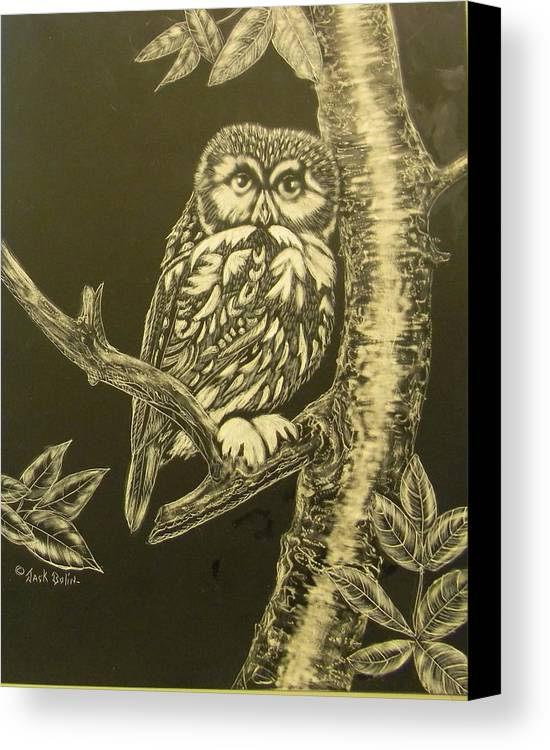 Owl Canvas Print featuring the painting Little Saw-whet Sold by Jack Bolin
