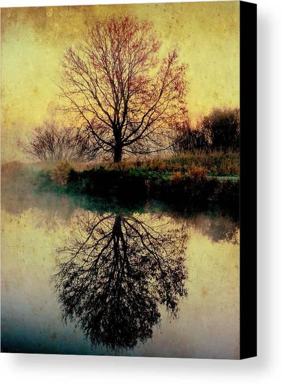 Landscape Canvas Print featuring the photograph Reflection On Golden Pond by Karen Castillo