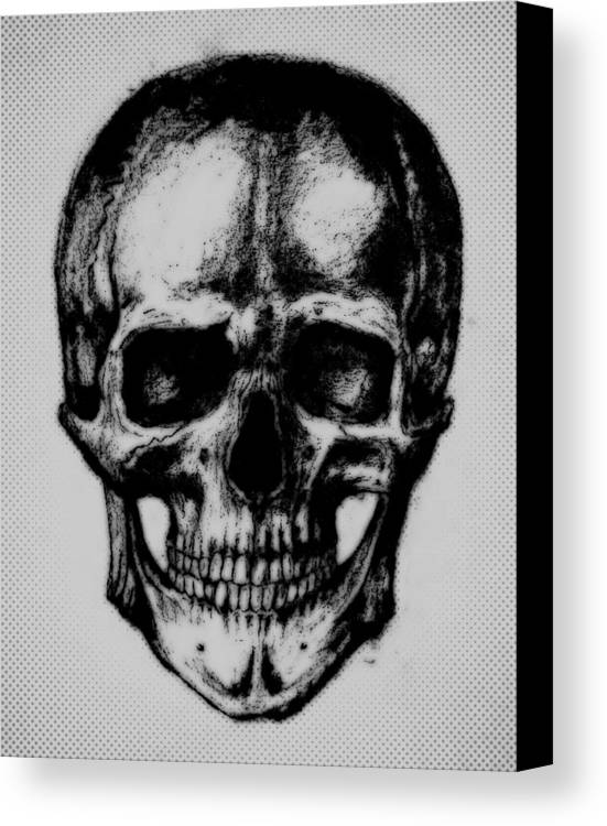 Skull Canvas Print featuring the drawing Skull In Shadow by Aleksandra Savova