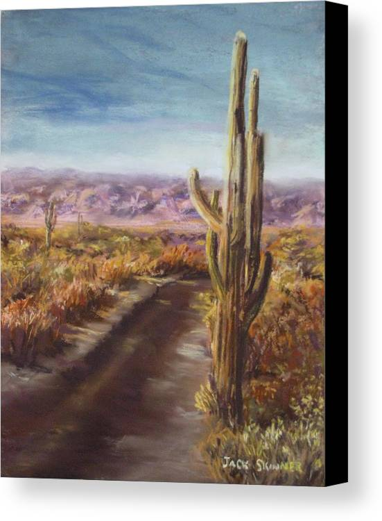 Desert Canvas Print featuring the painting Southern Arizona by Jack Skinner