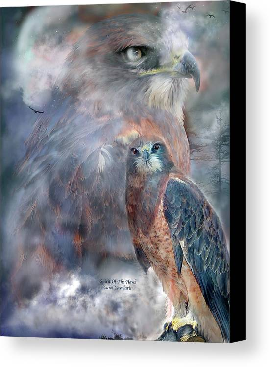 Hawk Canvas Print featuring the mixed media Spirit Of The Hawk by Carol Cavalaris