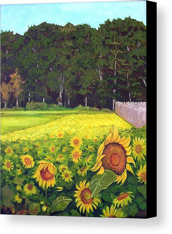 Sunflowers Summer Field Farm Impressionist Landscape Canvas Print featuring the painting Sunflower Field by Hilary England