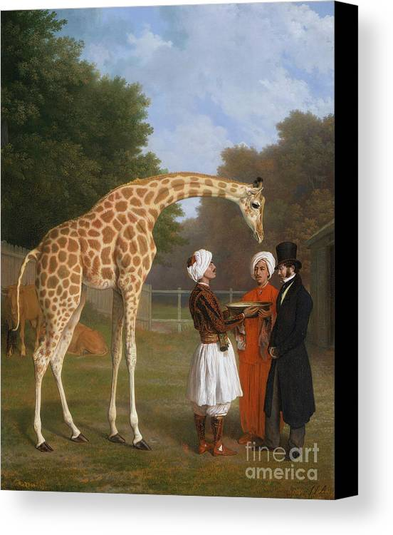The Zoological Garden Canvas Print featuring the painting The Zoological Garden by MotionAge Designs