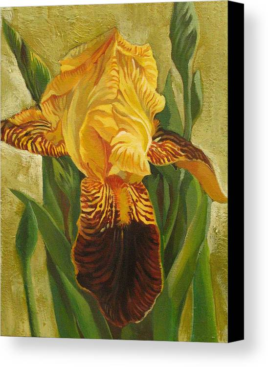 Iris Canvas Print featuring the painting Yellow Iris by Alfred Ng