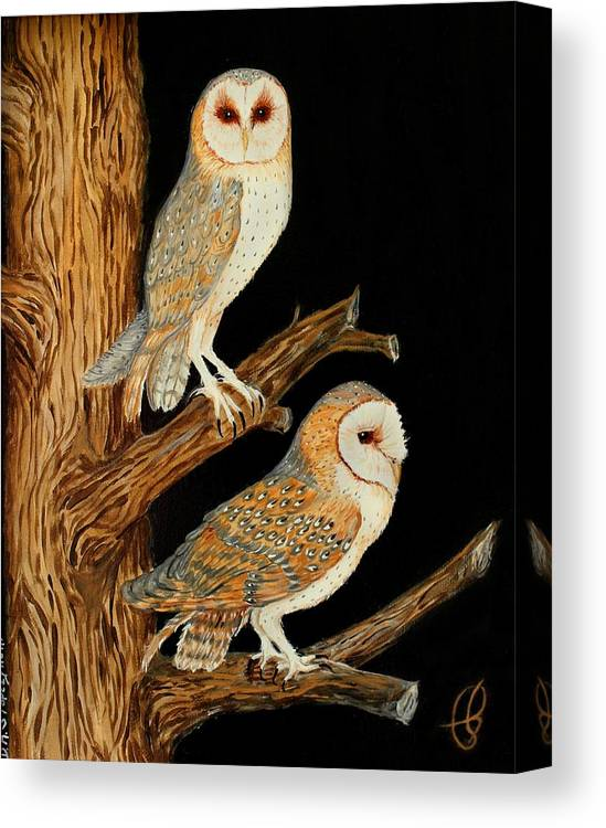 Owl Canvas Print featuring the painting Barn Owl Duo by Doreen Stopczynski