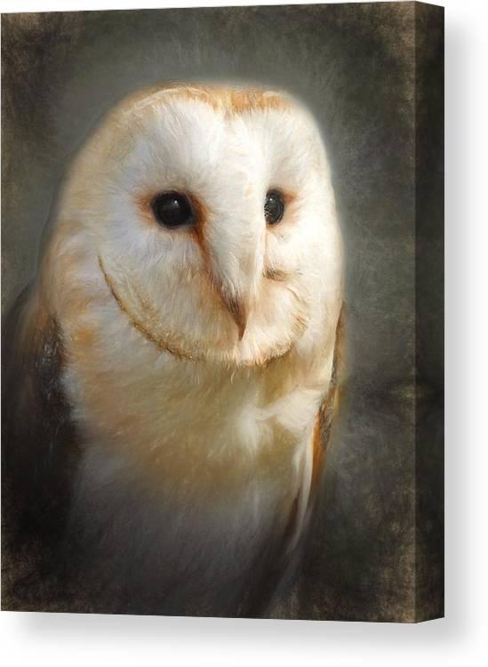 Barn Canvas Print featuring the digital art Barn Owl by Ian Merton