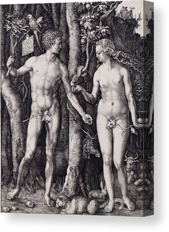 Adam And Eve Engraving Canvas Print featuring the drawing Adam And Eve Engraving by Albrecht Durer