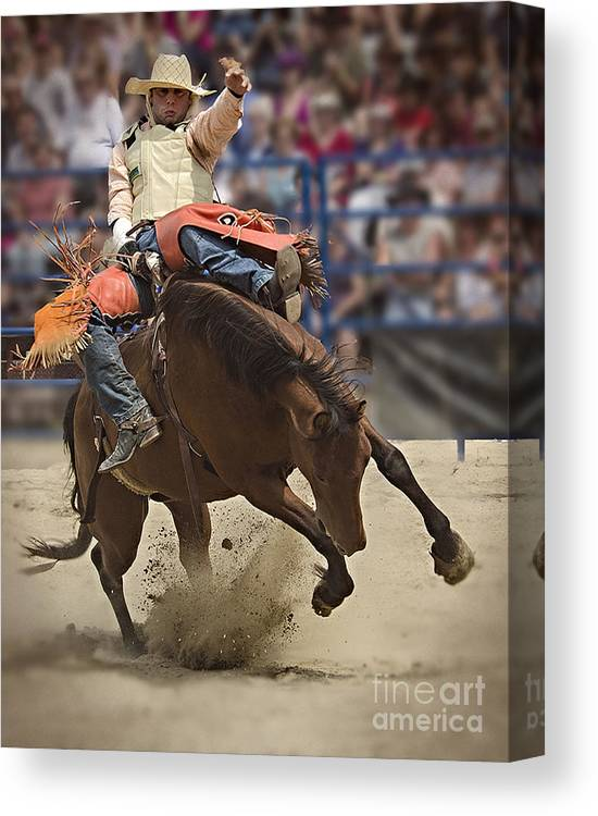 Rodeo Canvas Print featuring the photograph Bronco Rider by Barry Fawcett