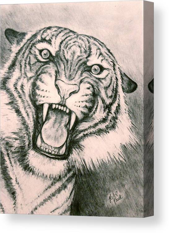 Tiger Canvas Print featuring the drawing Fierce by Kelci Pauk