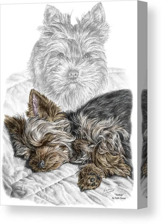 Yorkie Yorkshire Terrier Dog Print Canvas Print