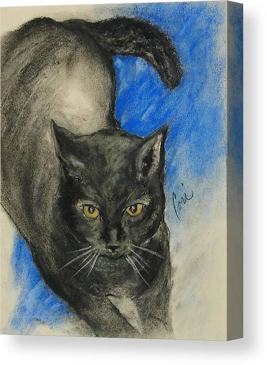 Cat Canvas Print featuring the drawing Chloe by Cori Solomon