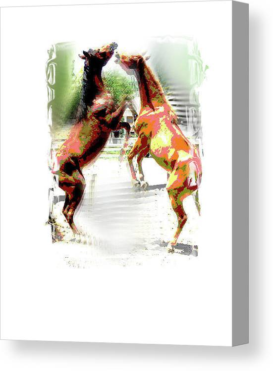 Horses Canvas Print featuring the painting Everglades Ponies by Donna Aloia