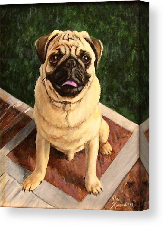 Pug Canvas Print featuring the painting Jade by Dave Kimbrell