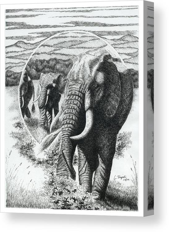 Wildlife Canvas Print featuring the drawing Telephoto by Lawrence Tripoli