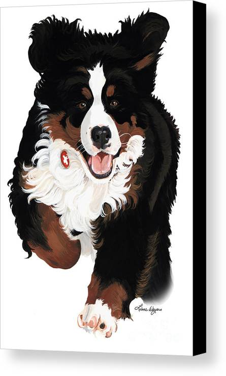 Bernese Mountain Dog Canvas Print featuring the painting Dylan Rocks by Liane Weyers