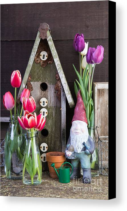 Barn Canvas Print featuring the photograph Inside The Garden Shed by Edward Fielding