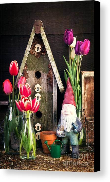 Barn Canvas Print featuring the photograph Inside The Potting Shed by Edward Fielding