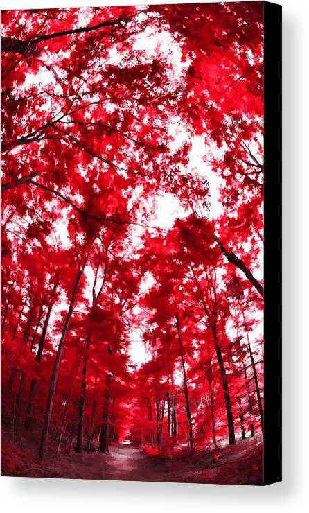 Trees Canvas Print featuring the photograph Red I by Tina Baxter