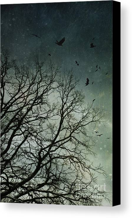 Atmosphere Canvas Print featuring the photograph Flock Of Birds Flying Over Bare Wintery Trees by Sandra Cunningham