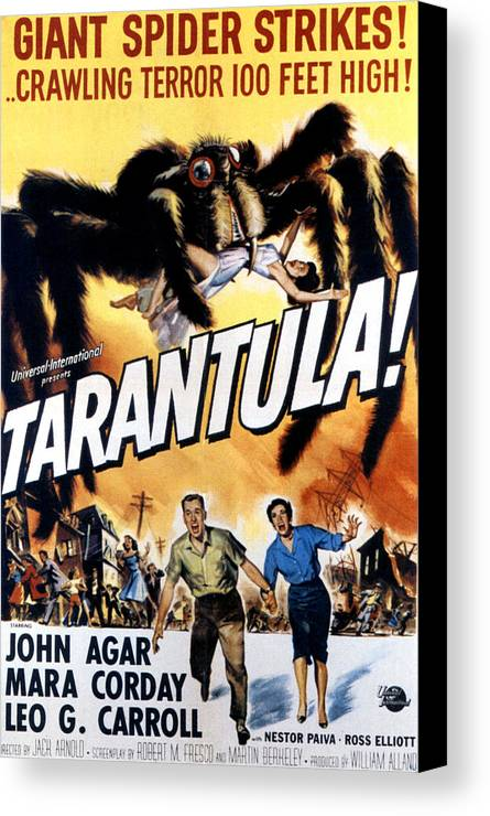1950s Poster Art Canvas Print featuring the photograph Tarantula, John Agar, Mara Corday, 1955 by Everett