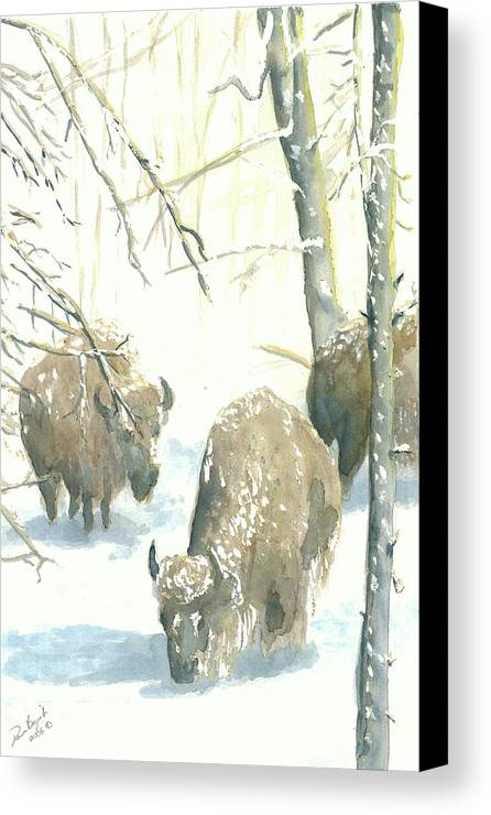 Buffalos After Snowstorm Canvas Print featuring the painting Snow Buffs by Dan Bozich