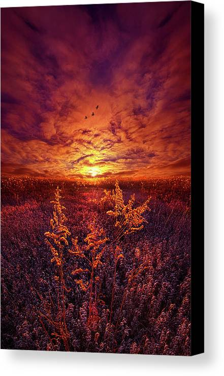 Clouds Canvas Print featuring the photograph Every Sound Returns To Silence by Phil Koch