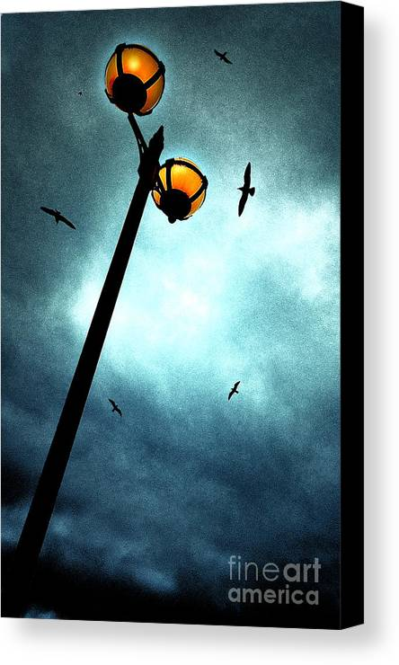 Lamp Canvas Print featuring the photograph Lamps With Birds by Meirion Matthias