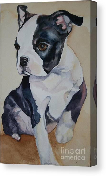 Puppy Canvas Print featuring the painting Baby by Susan Herber