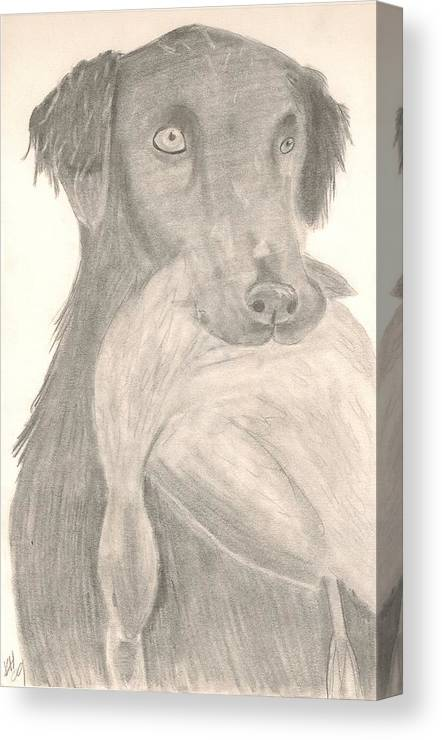 Dog Canvas Print featuring the drawing Bird Dog by Kristen Hurley