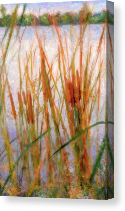 Cattails Canvas Print featuring the photograph Cattails By The Lake by Betty LaRue