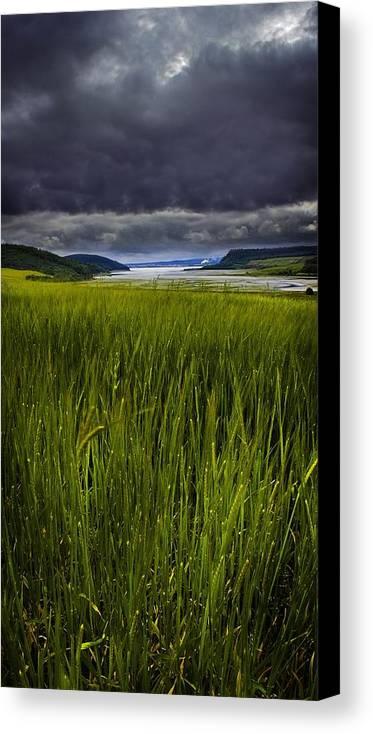 Munlochy Bay Canvas Print featuring the photograph Munlochy Bay by Joe Macrae