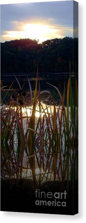 Reflection Canvas Print featuring the photograph One Of A Million Soddy Lake by Steven Lebron Langston