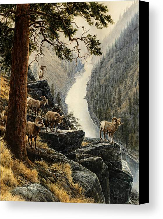 Salmon River Canvas Print featuring the painting Above The River by Steve Spencer