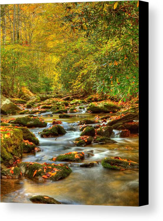 Tennessee Canvas Print featuring the photograph Beautiful Fall View In Tennessee by Cynthia Kidwell