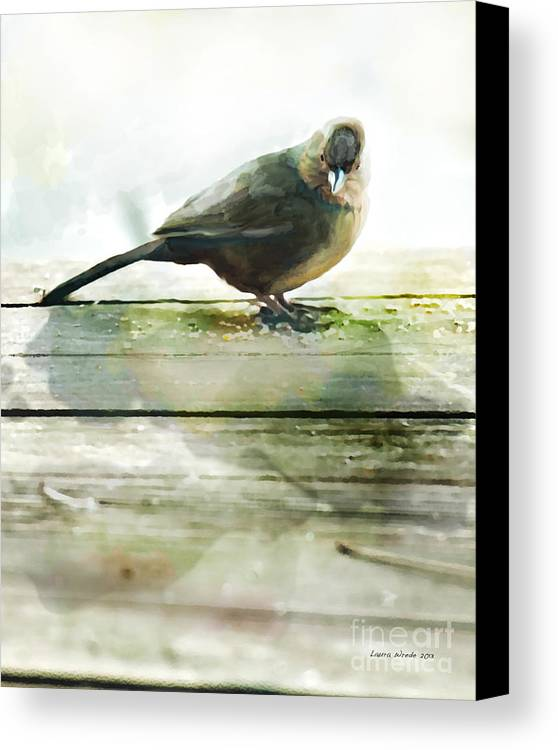Bird Images Canvas Print featuring the painting Bird On The Deck by Artist and Photographer Laura Wrede