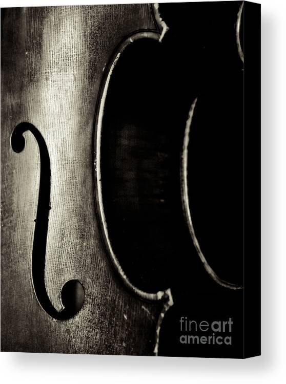 Cello Canvas Print featuring the photograph Cello Piece by Emily Kay