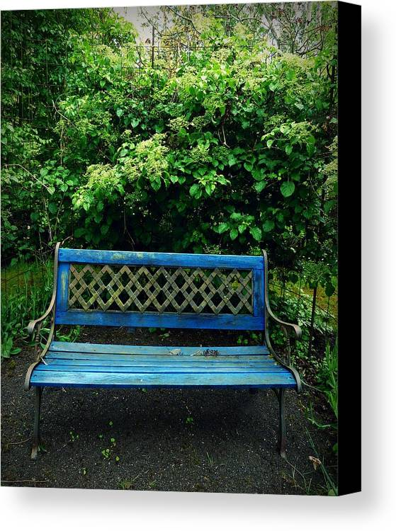 Bench Canvas Print featuring the photograph Crooked Little Bench by Patricia Strand