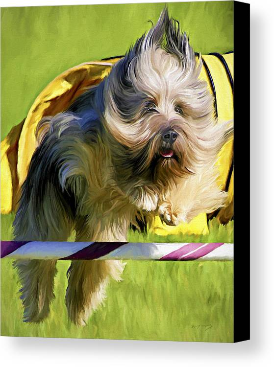 Silky Terrier Canvas Print featuring the painting High Flier by David Wagner