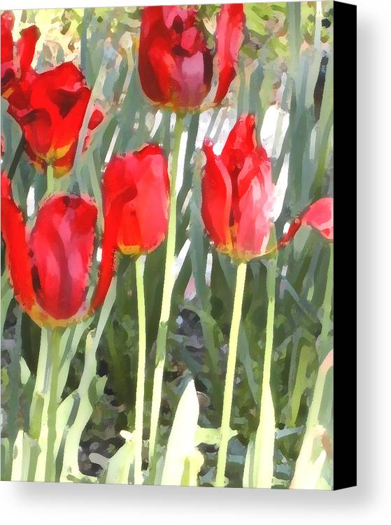 Red Tulips Canvas Print featuring the photograph Red Tulips by Jeanne A Martin
