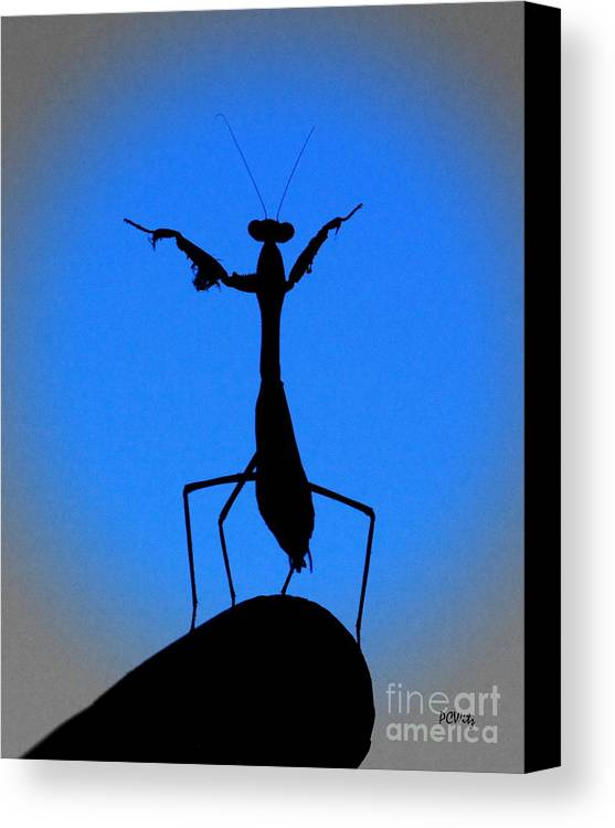 Conductor Canvas Print featuring the photograph The Conductor by Patrick Witz