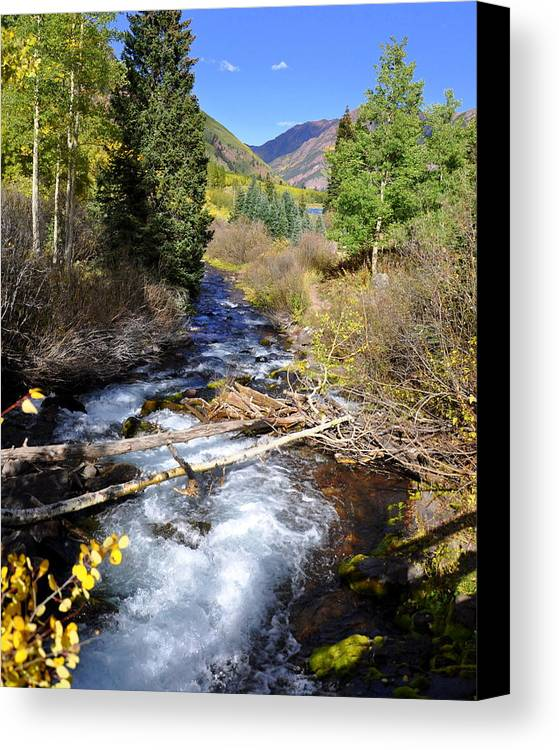 Water Flowing Canvas Print featuring the photograph The Flow by Pam Garcia