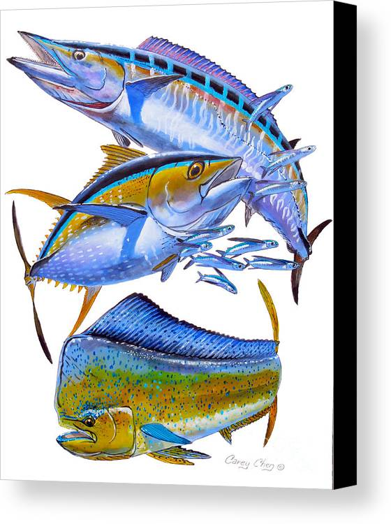 Wahoo Canvas Print featuring the painting Wahoo Tuna Dolphin by Carey Chen