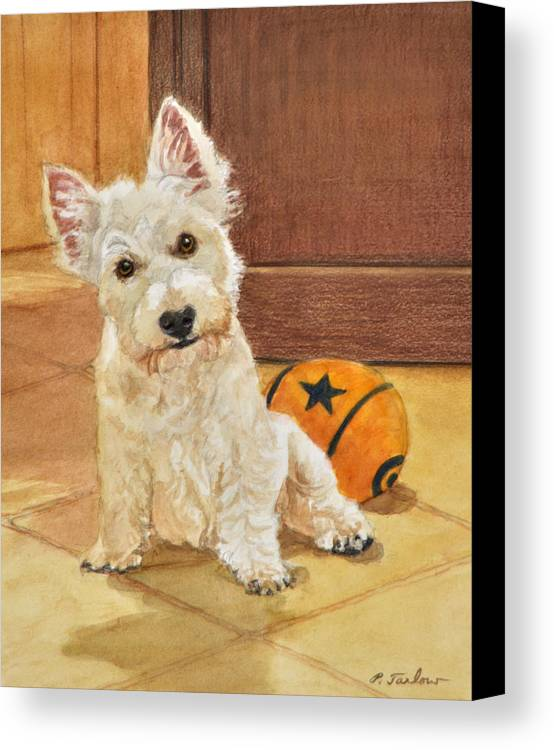 West Highland Terrier Canvas Print featuring the painting West Highland Terrier Puppy by Phyllis Tarlow