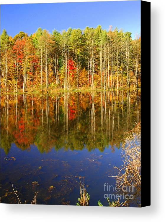 Fall Canvas Print featuring the photograph Coxsackie Reflection by Mark Gilman