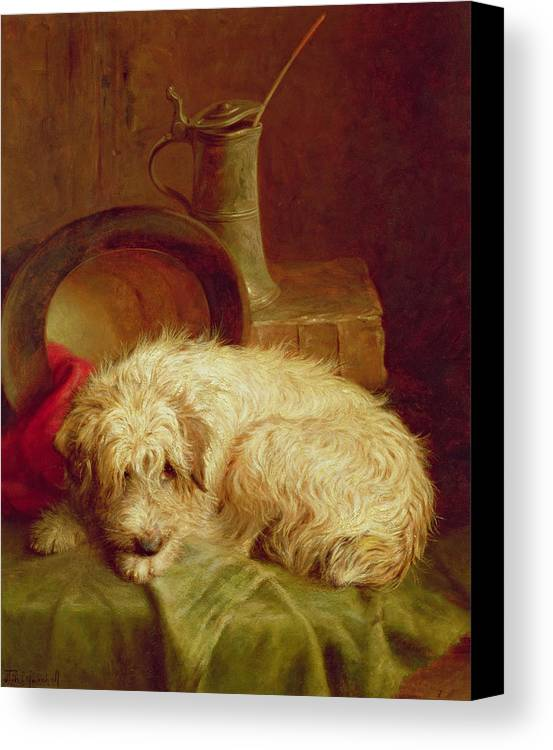 Terrier Canvas Print featuring the painting A Terrier by John Fitz Marshall